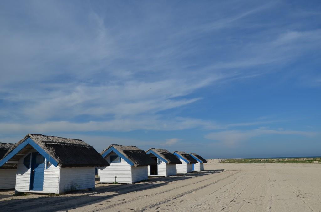 Cuminti pe nisip langa mare